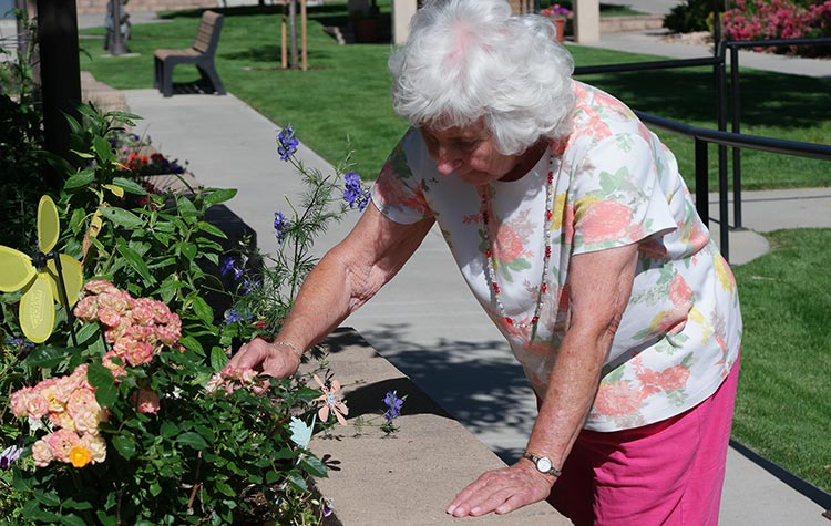 Senior Gardening | Independent Living Boulder CO